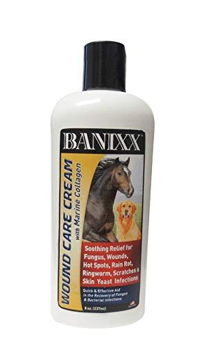 Banixx Wound Care Cream with moisturizing Marine Collagen