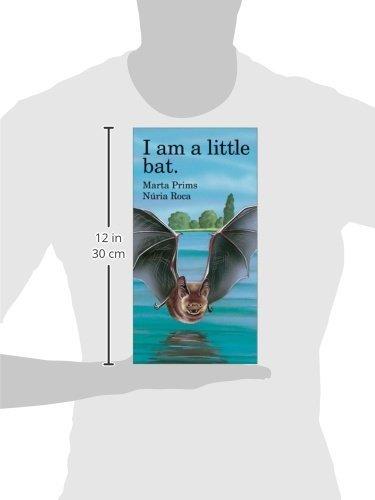 I Am a Little Bat (Barron's little animal series)