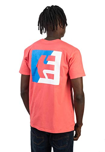 - Etnies Mens Icon Flag T-Shirt 410003663 (X-Large, Pink/White/Blue)