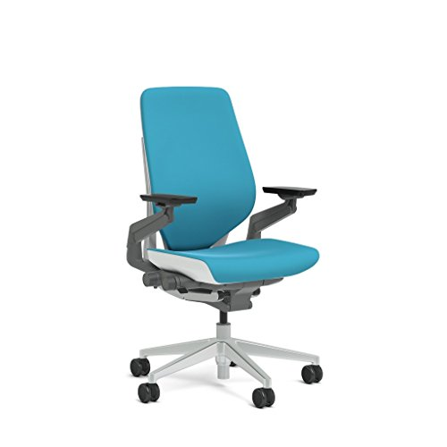 Steelcase Gesture Task Chair Shell Back Platinum