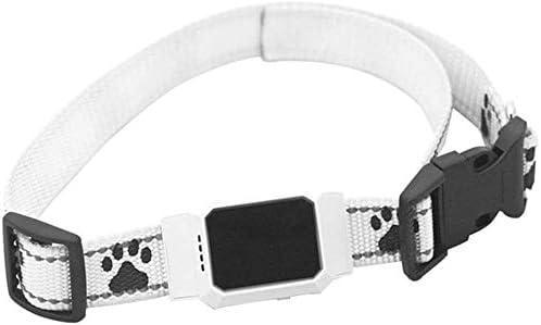 Knoijijuo Plotters Perro Localizador GPS Trazador con El Collar De Perro De Vigilancia Anti-Pérdida En Tiempo Real para Gato Perro Pequeño Crianza De Niños con Un Collar,Blanco: Amazon.es: Hogar