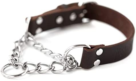 leather dog collar for training Mighty Paw Leather Training Collar, Martingale Collar,