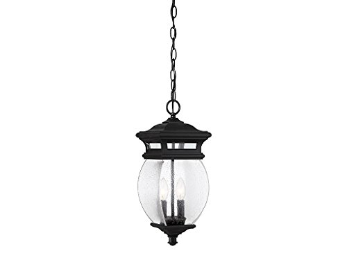 Outdoor Pendant 2 Light with Black Finish Metal/Glass Material C Bulb 7 inch 80 Watts ()