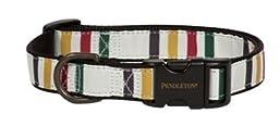 Pendleton Pet Hiker Collar - Glacier Small