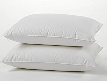 Two east coast premium pillows on top of one another