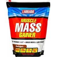 マッスルマスゲイナー 2.7kg (Muscle Mass Gainer 6 Lbs) (バニラ) [並行輸入品] B06XCMWQSS バニラ