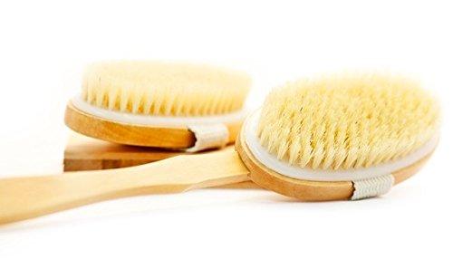 Качество сухой кожи тела кисть - улучшает здоровье кожи и красоту - с Съемный 11 мм в длину деревянной ручкой - отличный вариант для повседневного использования и путешествий - высокое качество натуральной щетины - Чистка помогает удалить мертвую кожу и т