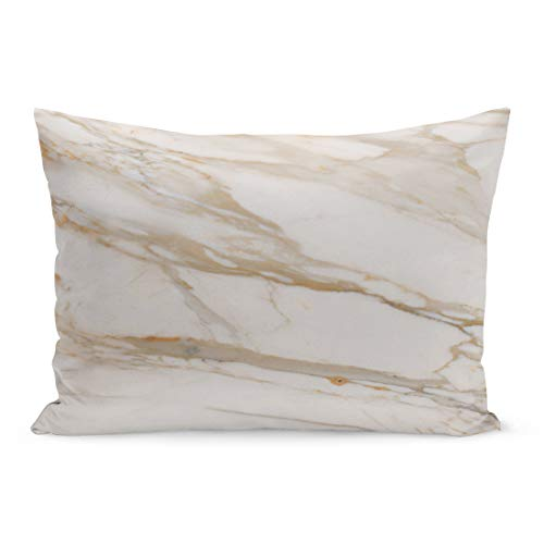 Semtomn Throw Pillow Covers Carrara White Marble Classic Floor Old Original Polised Pillow Case Cushion Cover Lumbar Pillowcase Decoration for Couch Sofa Bedding Car 20 x 26 ()