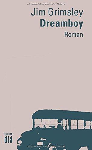 Dreamboy: Roman