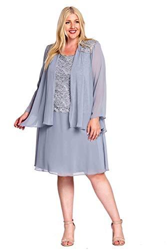 R&M Richards Women's Plus Size Womans Chiffon and lace Jacket Dress, Silver, 16W