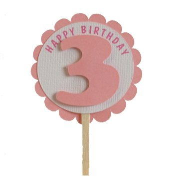 All About Details Shimmer Pink 3rd Birthday Cupcake Toppers,
