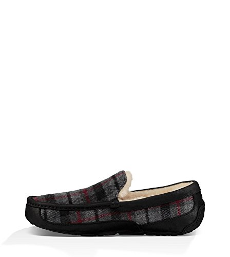 Plaid Ascot UGG Slipper Men's Tartan fnwBqx7UP