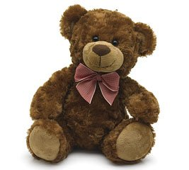 Burton and Burton Steven Plush 11'' Teddy Bear