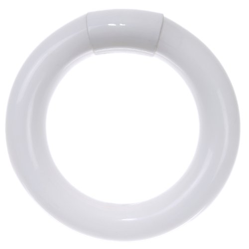 Sunlite FC8T9/CW Fluorescent 22W T9 Circline Ceiling Lights, 4100K Cool White Light, 4-Pin Base