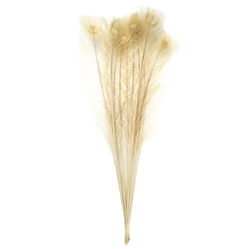 Zucker Feather (TM) - Peacock Eyes Bleached/Dyed - Eggshell
