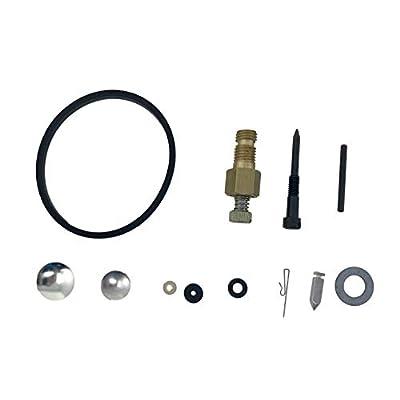 Tecumseh 31840 Carburetor Repair Kit: Garden & Outdoor