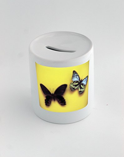 Money box with Butterfly