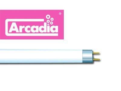 Arcadia T5 22