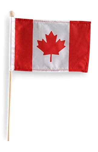 Tinisa's World Premium 4×6 Inch Canada Mini Flag Canadian Hand Held Stick Flags with Safety Ball Top 10 Pack For Sale