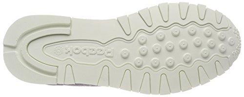 Chaussures Cl Homme De Running Mcc Reebok parischalk Gris wvqZREHx