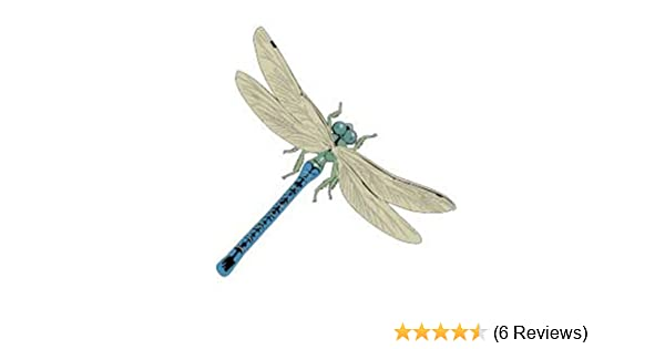 3 Dragonflies Large Dragonfly Approx 12 x 8 inches