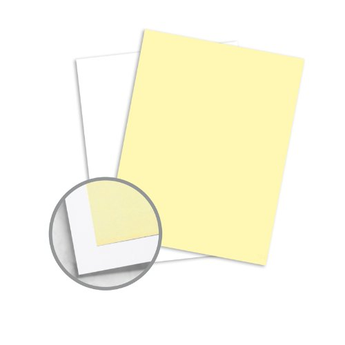 NCR Paper* Brand Superior Multi-Colored Carbonless Paper - 8 1/2 x 11 in 20.5 lb Bond Precollated 2-Part RS Canary, White 500 per Ream