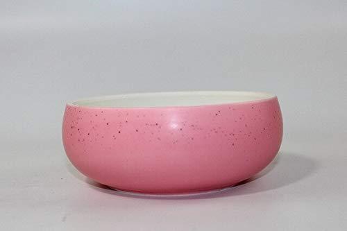 Bowl Planter - Creative Colorful Ceramic Fruit Salad Bowl Planters Hydroponics Narcissus Flower Pot Tabletop Plant Bonsai Art Ikebana Flowerpot ()