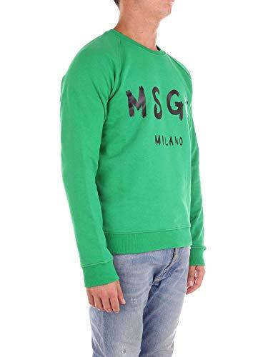 Vert 2440mm104184298 Sweatshirt Msgm Coton Homme FT1nqp