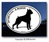 Boxer Bumper Sticker- NOT JUST A DOG- A BOXER- Dog Bumper Sticker Decal- I love my Boxer!