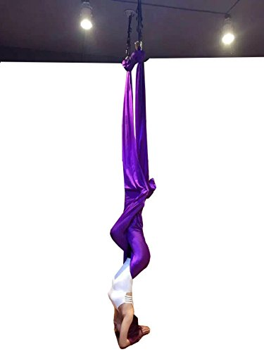 DASKING Premium Aerial Yoga Hammock Kit (Dark Purple) (Single Silk 12')