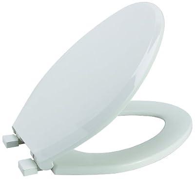 Premier Faucet 283032 Slow-Close, Elongated Plastic Toilet Seat, White