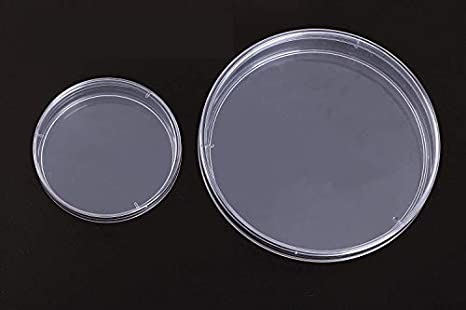 Shapenty 2 Sizes Plastic Sterile Petri Dishes Cell Tissue