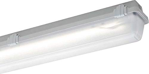 Schuch 161170353 a, bombilla, cristal, 10 W, 2 G7, Negro, 7 x 8 x 10 cm: Amazon.es: Iluminación