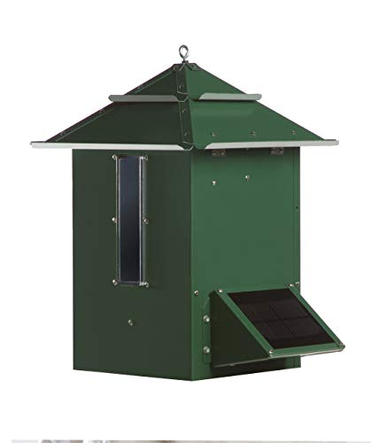 Koi Cafe Sweeney Feeders Automatic Koi Feeder - 5 to 10 Pound Capacity, Hartford Green - Premium DFT3REV8 Timer ()