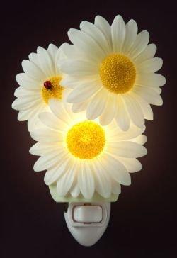 ibis-orchid-ladybug-daisies-night-light-50116