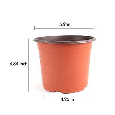 YIKUSH 6 Inch 100 Pack Plastic Nursery Pots for Seeding Flower Planter (6 Inch 100pack): Garden & Outdoor