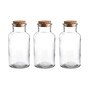 31h7oKOUTOL._SS300_ 50+ Best Glass Bottles With Cork Toppers