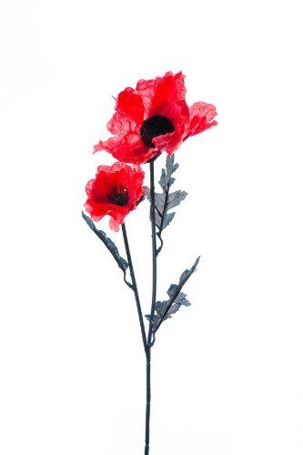Amazon pozy ltd 70cm red colour poppy flower with black stem pozy ltd 70cm red colour poppy flower with black stem 1702 mightylinksfo