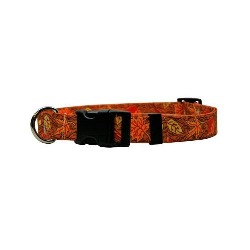 Yellow Dog Design Fall Leaves Dog Collar Fits Neck 14 to 20''/4'' Wide, Medium 3/4'' Wide by Yellow Dog Design