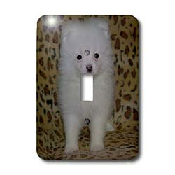 3dRose lsp_15767_1 White Pomeranian Puppy Single Toggle S...