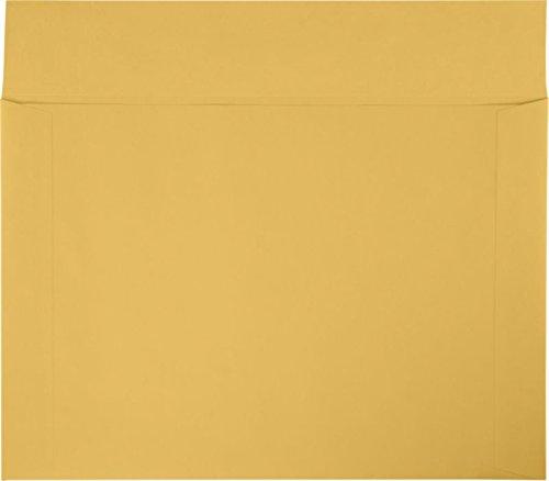 12'' x 17'' Booklet Envelopes - 40lb. Brown Kraft (250 Qty.)