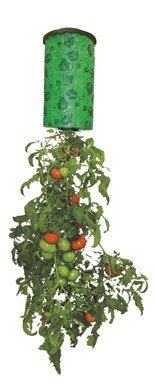 Upside Down Tomato Plant - Topsy Turvy Upside Down Tomato Planter - As Seen On TV