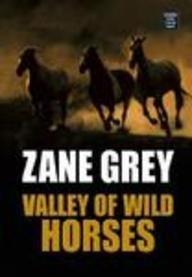 Valley of Wild Horses (Western Series) pdf epub