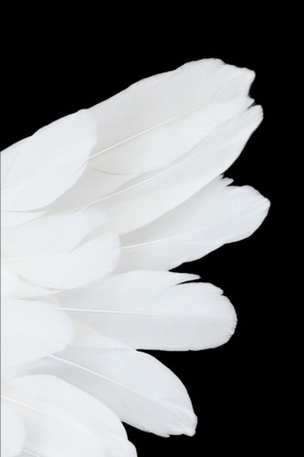 (White Angel Wing Journal: 150 Page Lined Notebook/Diary)