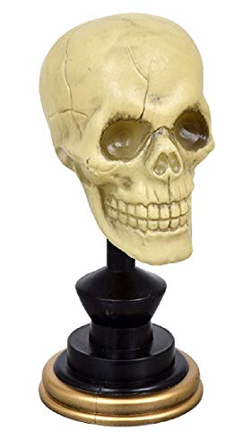 A&T Designs Realistic Skull Skeleton Plastic Bust Halloween Decoration - Table Setting, Home Decor - Spooky]()
