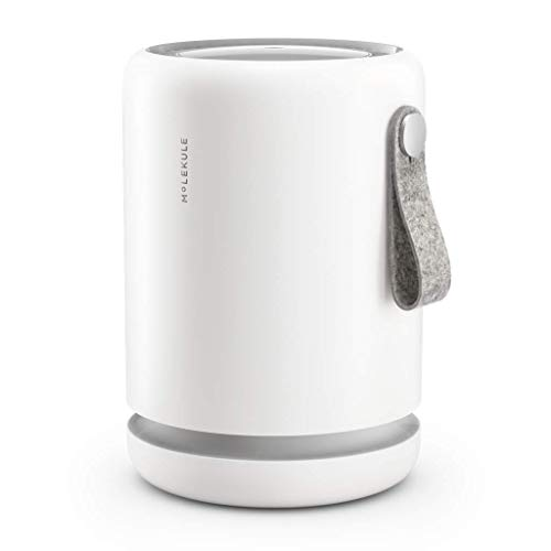 Molekule Air Mini Small Room Air Purifier with PECO Technology for Allergens, Pollutants, Viruses, Bacteria, and Mold, White