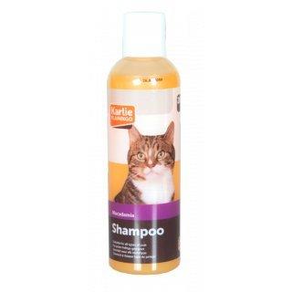 Katzenshampoo