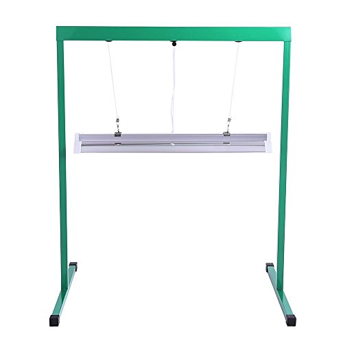 Jump Start Light System - iPower 24W 2 Feet T5 Fluorescent Grow Light Stand Rack for Seed Starting Plant Growing, 6400K