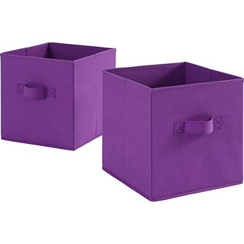(Animal Themed Toy Storage Bins and Coordinating Solid Collapsible Bins 2 Pack Sets (Purple))