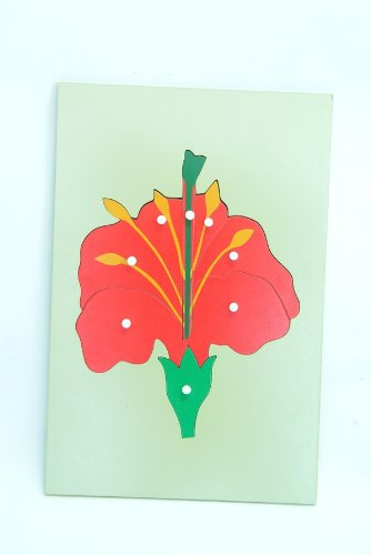 Montessori Big Flower Puzzle Botany